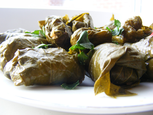 stuffed-vine-leaves-1