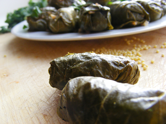 stuffed-vine-leaves-2