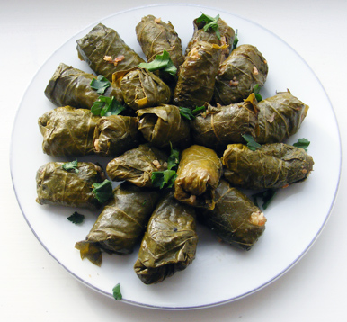 stuffed-vine-leaves-plate