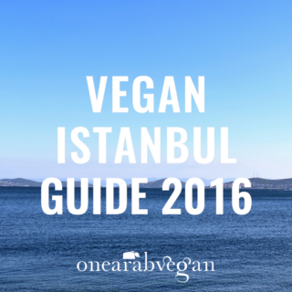 Vegan Istanbul Guide 2016